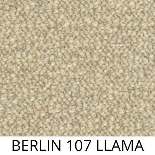 berlin_107_llama_p