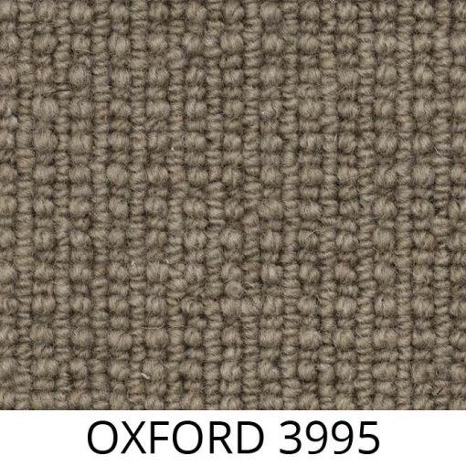 OXFORD 3995_P